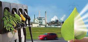 bioenergy_0